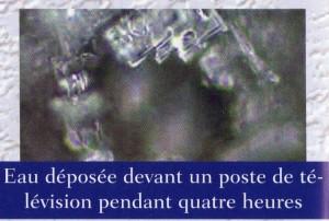 "www.quanta-la-vie.com, ""valerie madej"", ""masuru emoto"""