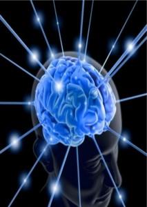 Impact des émotions sur le cerveau